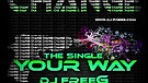 DJ FreeG and David Iro feat. Conny - Your Way (Radio Edit)