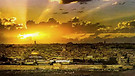 Jerusalem of Gold - Yerushalayim shel Zahav -Ofra Haza