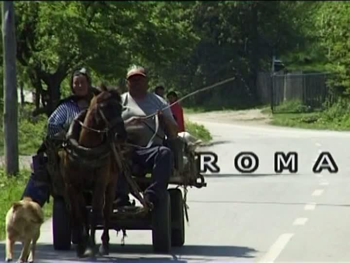 EUROPEAN ROMA VINEYARD MOVEMENT