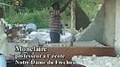 Janvier 2010 : Haïti est secouée... 2e Partie