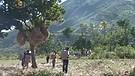 January of 2010: Haiti is shaken... Part 3 of 5.
