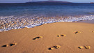 Footprints in the Sand-Evidence for the Creator