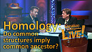 (3-24) Homology – do common structures imply common ancestor? (Creation Magazine LIVE!)
