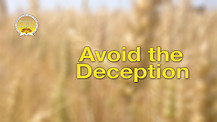 Avoid the Deception