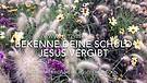 Vlog 111- Bekenne deine Schuld - Jesus vergibt