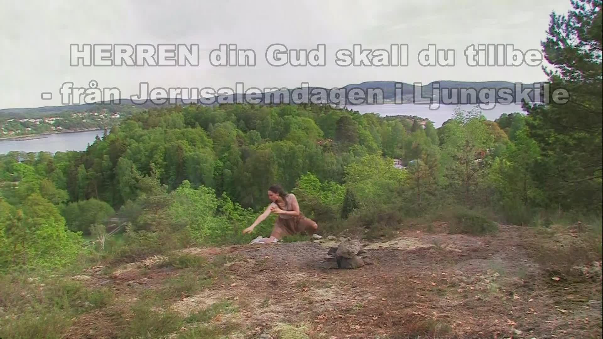 HERREN din Gud skall du tillbe 2