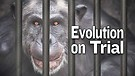 Evolution on Trial