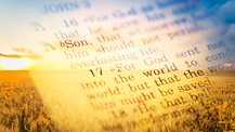 The True Gospel and No Fake News - Part 1