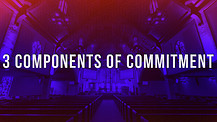 3 Components of Commitment