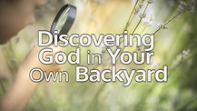 Discovering God in Your Own Backyard