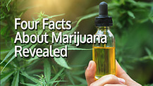 Four Facts About Marijuana Revealed