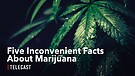 Five Inconvenient Facts About Marijuana