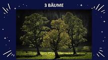 WIR SIND DER BAUM 2 -