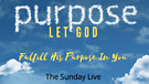 Let GOD Fulfill His Purpose in You