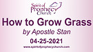 Spirit of Prophecy Church - Sunday Service 04/25...