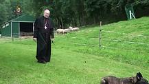 Las persecuciones - Monseñor Jean Marie, snd les habla